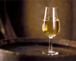 Ruta Vino de Jerez