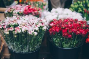 Mercado de las Flores - Gran Vida
