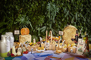 Cheese Picnic Poncelet