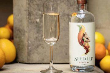 Gin Tonics premium (sin alcohol) con Seedlip