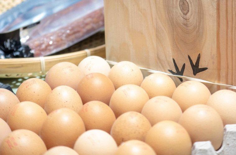 Huevos Galo Celta